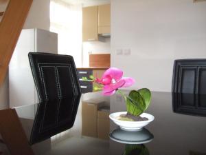 Apartments Vila Jurka, Apartmány  Križevci pri Ljutomeru - big - 25