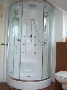 Apartments Vila Jurka, Apartmány  Križevci pri Ljutomeru - big - 15