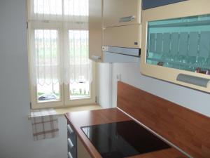 Apartments Vila Jurka, Apartmány  Križevci pri Ljutomeru - big - 14