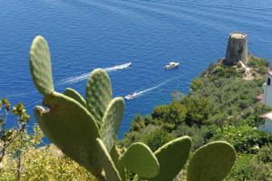 Villa Cala del Marò - AbcAlberghi.com