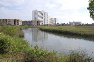 Mariners Cove A101 Condo, Apartments  Myrtle Beach - big - 12