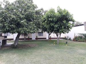Complejo Cabañas Las Moras, Apartments  San Rafael - big - 56