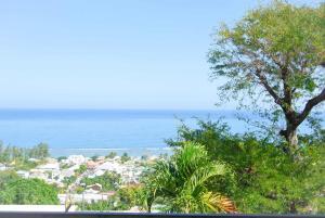 Cap Soleil, Ferienwohnungen  Saint-Leu - big - 48