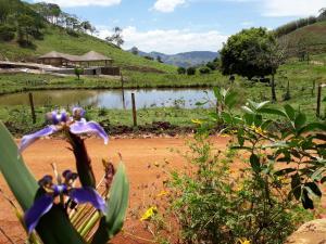 Pousada Boa Vista, Guest houses  Santo Antonio de Itabapoana - big - 24