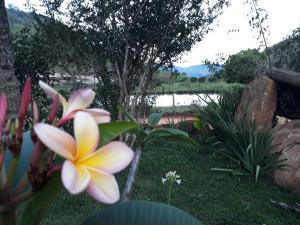 Pousada Boa Vista, Vendégházak  Santo Antonio de Itabapoana - big - 25