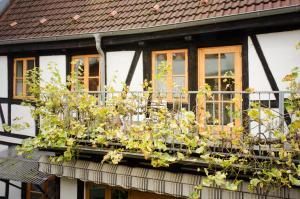 Herberge KAFFETIET, Apartmánové hotely  Wismar - big - 9