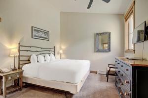 Mountain Thunder Lodge, Apartmánové hotely  Breckenridge - big - 33