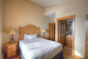 Mountain Thunder Lodge, Apartmánové hotely  Breckenridge - big - 51