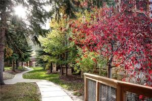 Conveniently Located 2 Bedroom - PS147, Case vacanze  Park City - big - 3
