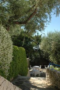 Hotel Selenia Residence, Szállodák  Castro di Lecce - big - 10