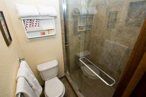 Appealing Town Of Telluride 1 Bedroom Hotel Room - MBB09, Отели  Telluride - big - 8