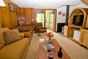 Elegant Town Of Telluride 1 Bedroom Hotel Room - MBB05, Hotels  Telluride - big - 1