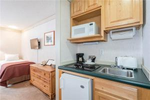 Beautifully Appointed Town Of Telluride 1 Bedroom Hotel Room - MI105, Szállodák  Telluride - big - 4