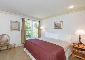 Appealing Town Of Telluride 1 Bedroom Hotel Room - MI114, Hotel  Telluride - big - 1