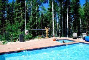 Invitingly Furnished 1 Bedroom - BCL203B, Отели  Telluride - big - 13