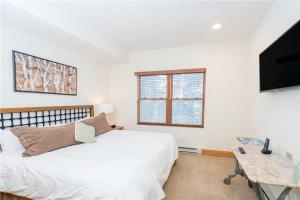 Invitingly Furnished 1 Bedroom - BCL203B, Hotel  Telluride - big - 1