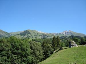 Hotel Wetterhorn, Hotels  Grindelwald - big - 3