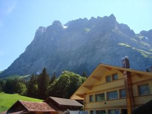 Hotel Wetterhorn, Hotels  Grindelwald - big - 5