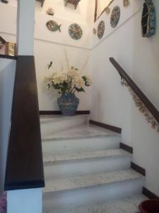 Affittacamere Rosa Dei Venti, Bed and breakfasts  Levanto - big - 19