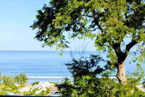 Cap Soleil, Ferienwohnungen  Saint-Leu - big - 55