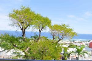 Cap Soleil, Ferienwohnungen  Saint-Leu - big - 61