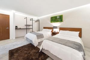 Hotel Urban 101, Hotely  Chetumal - big - 5
