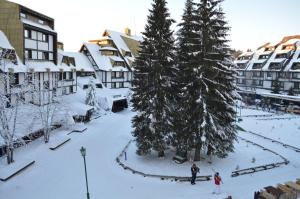 Apartments Suncani Vrhovi Kopaonik, Apartments  Kopaonik - big - 59