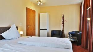 Hotel Am Schloss, Hotely  Alzey - big - 12