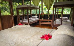 Tucan Single Bed in Shared Co-ed Cabana (Bunk Bed)