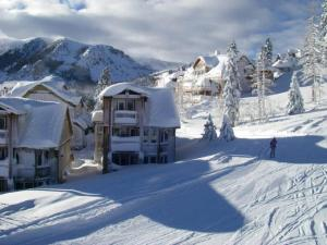 Eagle Run by 101 Great Escapes, Apartmanok  Mammoth Lakes - big - 10