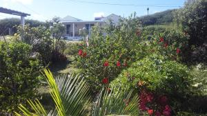 Hebergement Vue Sur Mer, Vendégházak  Port Mathurin - big - 1