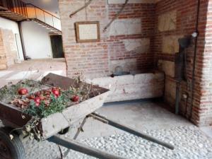 Agriturismo La Sophora, Apartmány  Montegaldella - big - 90