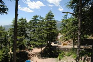 Hotel Dogra Residency Patnitop, Hotels  Udhampur - big - 25
