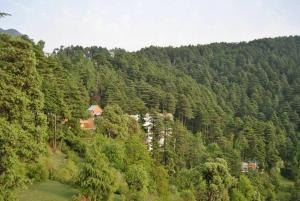 Hotel Dogra Residency Patnitop, Hotels  Udhampur - big - 29