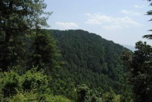 Hotel Dogra Residency Patnitop, Hotels  Udhampur - big - 30