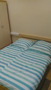 Rooms Vila Jurka, Hostels  Križevci pri Ljutomeru - big - 8