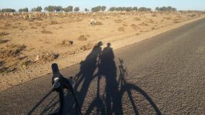 Takad Dream Rural, Homestays  El Borj - big - 28
