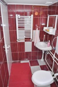 Guest House Vila Banjica, Pensionen  Pirot - big - 129