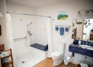 King Room with Roll-In Shower - Disability Access/Pet-Friendly