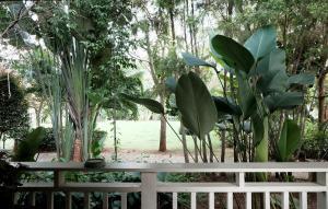 Khao Yai Cottage, Rezorty  Mu Si - big - 48