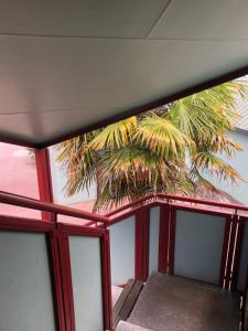 The Backyard Inn, Hostely  Rotorua - big - 86