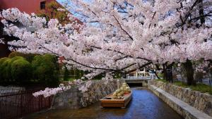 Kamo River sweet house, Appartamenti  Kyoto - big - 8