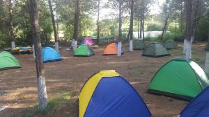 Sahil Kamp Istanbul