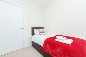 PSF Panorama Apartments, Appartamenti  Ashford - big - 69