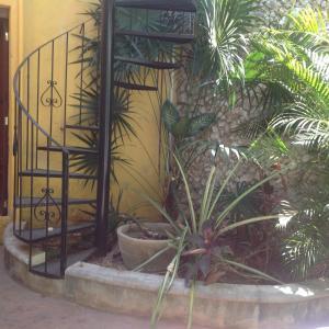 Casa Venus, Case vacanze  Mérida - big - 17