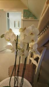 Trinity Boutique B&B, Bed and breakfasts  Peterhead - big - 14