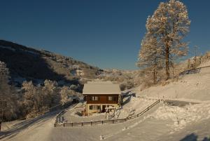 Ferienwohnung, Apartmanok  Klosters Serneus - big - 10