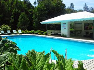 Hotel Salto del Carileufu, Hotely  Pucón - big - 216