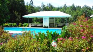 Hotel Salto del Carileufu, Hotely  Pucón - big - 218