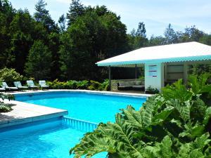 Hotel Salto del Carileufu, Hotely  Pucón - big - 145